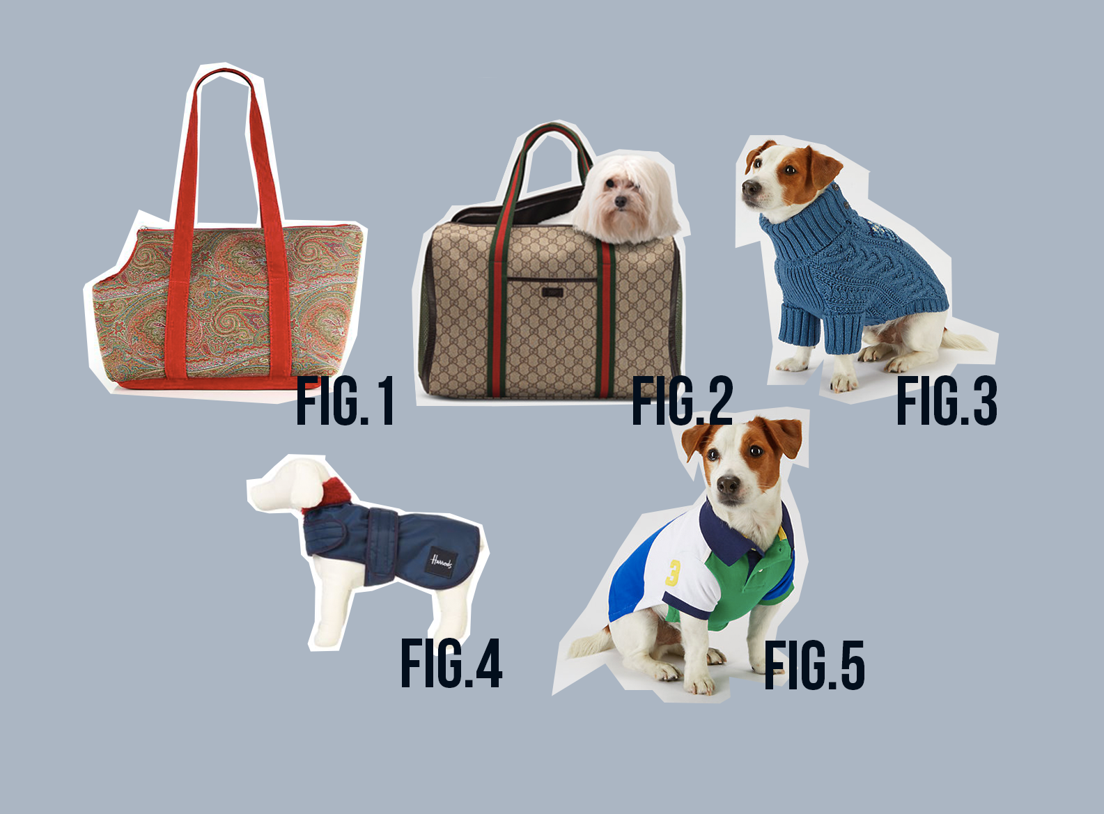 guide du chien fashion