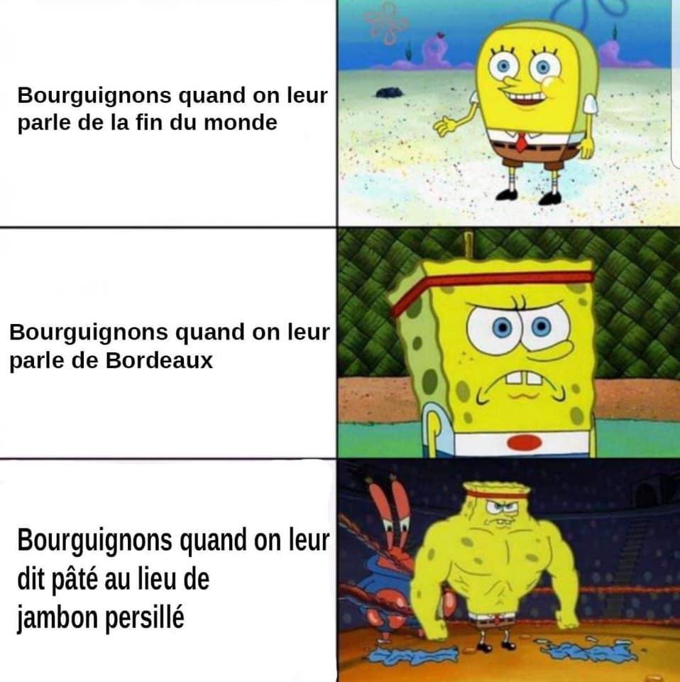 BOURGOGNE - Memes de Bouseux Bourguignons.jpg