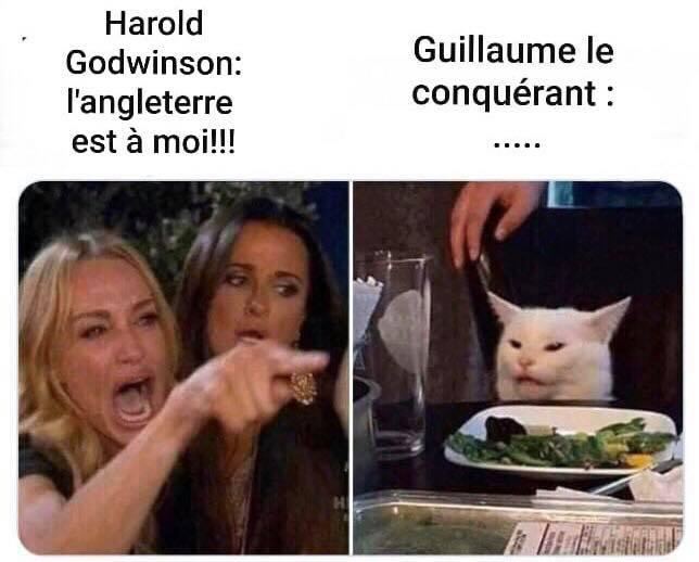 Meme 11 de Jean-Michel via Histoires de France 2,0.jpg