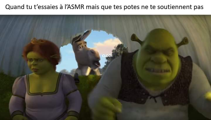 Neurchi de Shrek